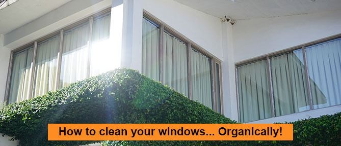 How to clean your windows Organically (4 minute read)